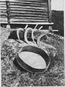 På hver gård og plass fantes det flere «skjurruer».
