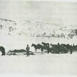 Tømmerkjøring ved Grønfjellet 1942.