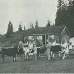 Sommervollen  1940.  F.v.: Nelly Avelsgård, Anna Avelsgård, Inger Uglem, Inger Langlitrø og Brynhild  Langlitrø. Foto: Garberg.