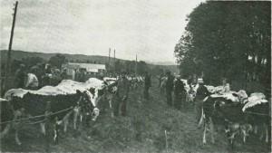 Fesjå ved Marienborg 1942. Foto: N. Aftret