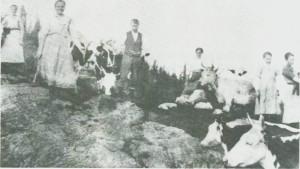 Dette bildet -fra ca. 1920 - er fra Øver Langsetvollen. Fra venstre Gina Størset, Karen Valstadberg, Nils Uglem, Johanna J. Langset, Jorun Langsetmo, Karen Dyrdal.