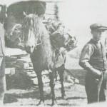 Ola Morset på setra i ferd med å kløvje heim avdrått, omkring 1910. Gjetergutten er Ole Hårstadmo.