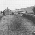 Folket på Bønnsbakken drev slåttonn på Lunden fra 1850-åra.