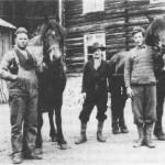Hestene var en viktig faktor i gardsdrifta. Sammen med dem ser vi Ola og Ingebrigt Flakne og Ingmar Bakken.