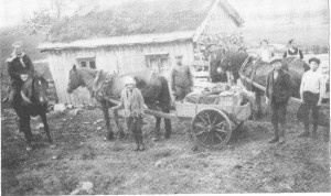 På seterveg i 1928 (kvil på Hoven). Beret-Marta Evjen til hest.