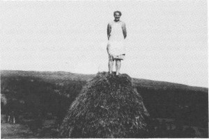 Marianne Krogstad Stubbe på høystakk i Kråssådalen i 1949. Hun tar imot høyet og skal snart tre stakktorva ned over stanga.