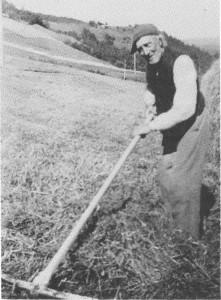 John Tuset i slåttonna 1949, 86 år.