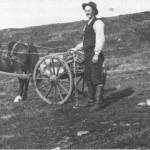 John J. Lien for med hest i fjellet både sommer og vinter, og var en framifrå kjører. Dette er sommeren 1915 eller 1916.