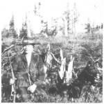 Elgjegeren John J. Valli i 1920.